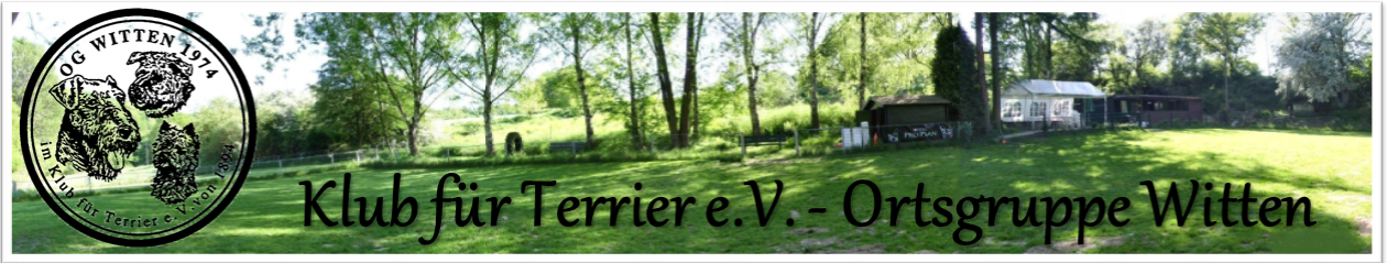 Herzlich Willkommen beim Klub für Terrier e.V  – Ortsgruppe Witten